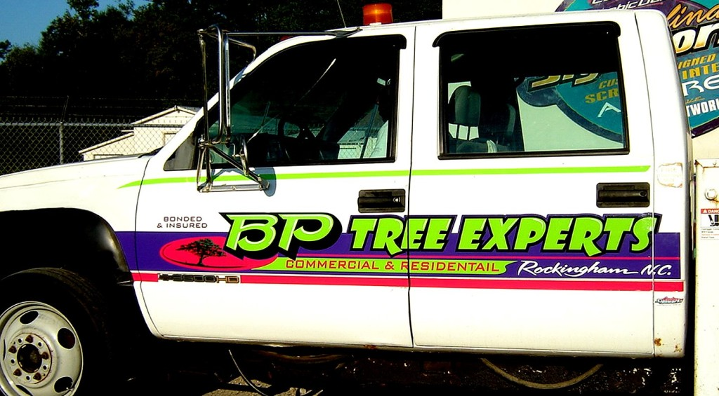 BP Tree best